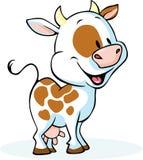 Situación y sonrisa divertidas de la historieta de la vaca Fotografía de archivo