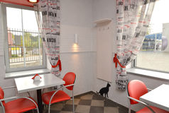 Situation in modern cafe with red chairs. Interior Royalty Free Stock Images