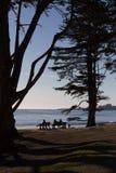 Sitzen auf einer Bank, die einen sandigen Strand und den Ozean übersieht stockfotografie