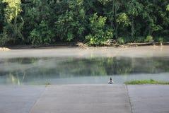 Sitzen durch den Rand des Flusses - 2 stockbilder