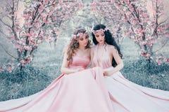 Sitzen erstaunliche Elfe zwei im fabelhaften Kirschblütengarten Prinzessinnen in luxuriösem, Rosakleider Blondine und lizenzfreies stockbild