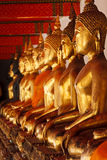 Sitzende Buddha-Statuen, Thailand Lizenzfreies Stockfoto