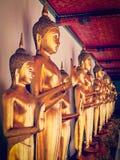 Sitzende Buddha-Statuen, Thailand Stockfotos