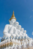 5 sitzende Buddhas Statue Lizenzfreies Stockfoto