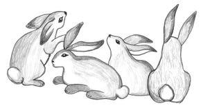 Sitzende Kaninchengruppe, Skizze lizenzfreie abbildung