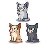Sitzende Vektorkatzen, verschiedene Farben Lizenzfreie Stockbilder