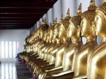 Sitzende Zahlen Statuen Buddhas der goldenen Meditation innerhalb des Korridors Stockfotos
