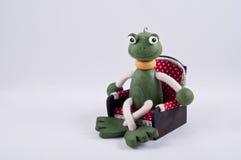 Sitzender Frosch Lizenzfreies Stockfoto