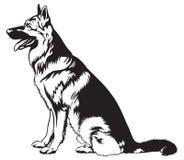 Sitzender Hundeschäferhund Stockfotografie