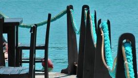 Sitzt nahe dem Meer stock video
