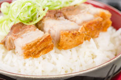 Siu Yuk. Chinese crispy roast pork belly served with steamed rice Stock Photography