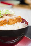 Siu Yuk. Chinese crispy roast pork belly served on top of steamed rice Royalty Free Stock Photo