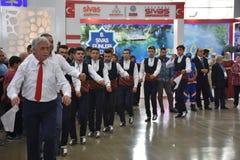 2017 Sivas dni Ä°stanbul, Turcja Obraz Stock