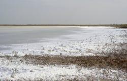 湖Sivash 免版税库存照片