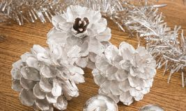 Siver Baubles and Pinecones for Christmas Ornament, Stock Photography