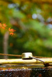 Siviera di bambù Fotografie Stock Libere da Diritti