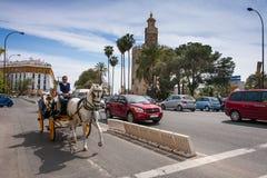 Siviglia, Andalusia, Spagna - 28 marzo 2008: carrozzino con il cavallo dentro immagini stock