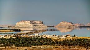 Siwa湖和绿洲,埃及 免版税库存照片