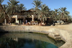 The Siwa Oasis in the Sahara. In Egypt stock images