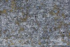 Siwieje abstrakcjonistycznego textured grunge ściany tło dla i zielenieje używa w projekcie ?cienny czerep z p?kni?ciami fotografia stock