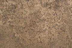 Siwieje betonową teksturę Fotografia Royalty Free