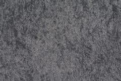 Siwieje długie włosy dywanowego tekstury zakończenie up Obraz Royalty Free