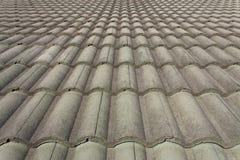 Siwieje dachówkowego skłon Fotografia Stock