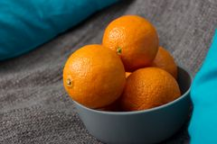 Siwieje puchar z tangerines Obraz Royalty Free