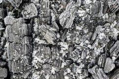Siwieje węgiel przy białym śniegiem Obrazy Stock
