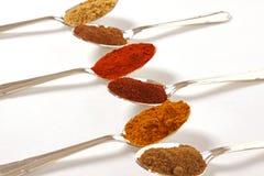 Six épices dans une ligne Image stock