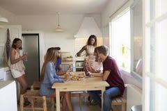 Six amis adultes dans la cuisine à un dîner occasionnel Image libre de droits