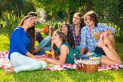 Six amis de sourire appréciant le pique-nique en parc Images libres de droits