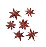 Six anise flowers Stock Photos