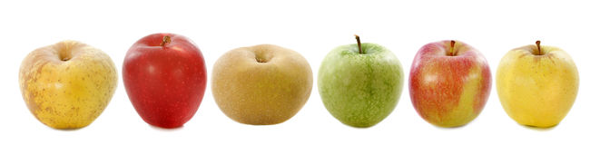 Six apples Royalty Free Stock Images