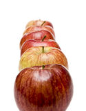 Six Apples in a Row on White Stock Photography
