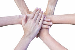 Six arms unite with hands on each other Stock Image
