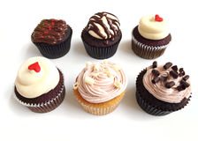 Six assorted cup cakes Royalty Free Stock Photography