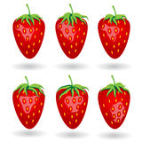 Six berries of strawberries under different lighting angle Royalty Free Stock Image