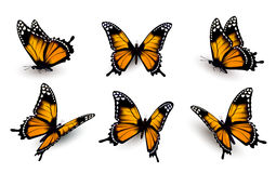 Six butterflies set. Stock Photography