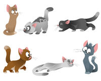 Six cats set Royalty Free Stock Images