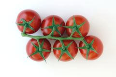Six Cherry tomatoes royalty free stock image