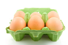 Six chicken eggs in green carton Stock Images