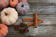 Six rustic aged pumpkins different colors on a rustic wooden background. Six Colorful aged pumpkins with star anise and cinnamon siicks all in horizontal form royalty free stock images
