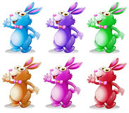 Six colorful bunnies Royalty Free Stock Photo