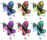 Six colorful butterflies Stock Photo