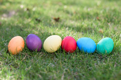 Six colorful easter eggs Stock Image