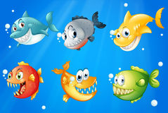 Six colorful fishes under the deep sea Royalty Free Stock Images