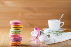 Six colorful french macaron and cup Royalty Free Stock Images