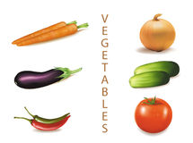 Six colorful vegetables. Royalty Free Stock Photography