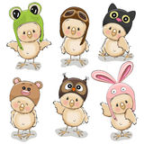 Six Cute Chicks Royalty Free Stock Image